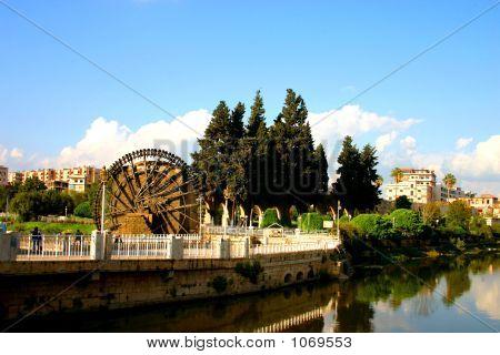Hama Syria 15