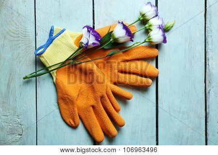 Beautiful composition of flower and garden gloves on light-blue wooden background