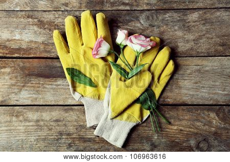 Composition of sensitive blossom and gardener's yellow gloves on wooden background