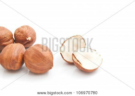 Some Tasty Hazelnuts