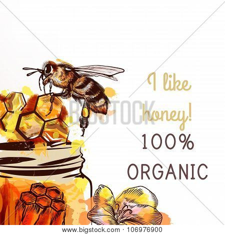 Background With Hand Drawn In Watercolor Style Bee Sit On A Comb Fully Of Honey