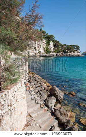 Coastal landscape with metal fence