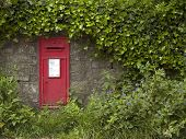 picture of english ivy  - English post box set into a wall - JPG
