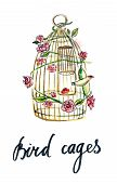 ������, ������: Gold Cage For Bird