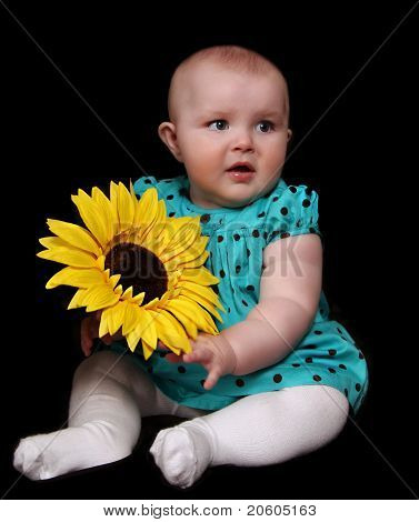 Beautiful Infant Girl Sitting With Large Golden Sunflower. Isola