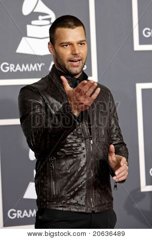 LOS ANGELES - JAN 31:  Ricky Martin arrives at the 52nd Annual GRAMMY Awards held at Staples Center in Los Angeles, California on January 31, 2010.