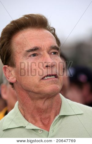 MALIBU - MAY 5: Arnold Schwarzenegger makes a statement because of a wildfire in Malibu on November 25, 2007.