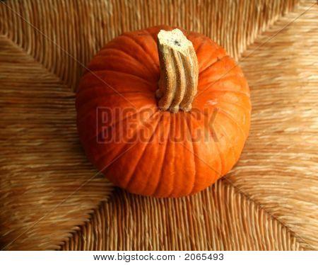 Cute Little Pumpkin Sitting On A Chair