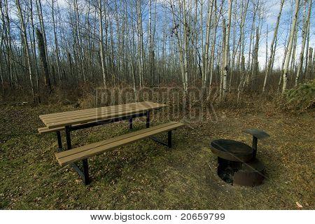 picnic site