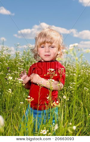 little boy enjoy on meadow