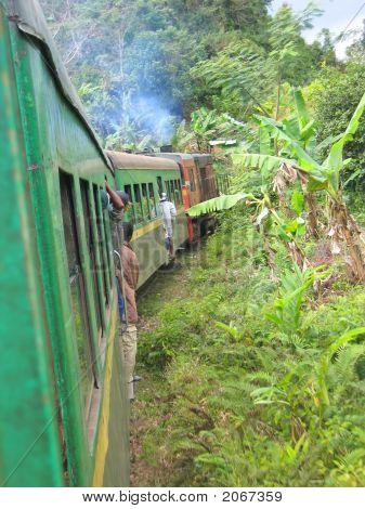 Old Passenger Rail Train In The Jungle, Fianarantsoa To Manakara, Madagascar
