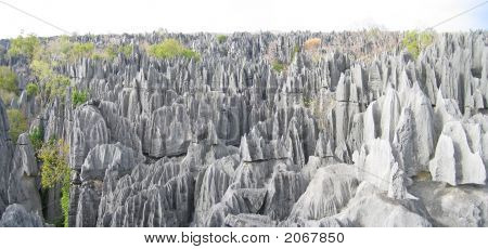Another Large View On The Top, Tsingy Of Bemaraha Park, Madagascar, Panoramique