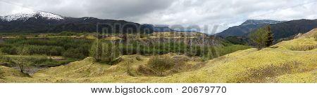 Hummocks Boundary Trail Mt. St. Helens