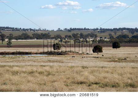 ländlichen