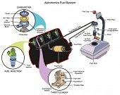 Automotive Fuel System infographic diagram showing parts of carburetor injector throttle body from t poster