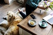 Woman Arranging Flowers with Golden Retriever Dog Laying poster