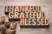 thankful, grateful, blessed - Thanksgiving theme - word abstract in vintage letterpress wood type wi poster