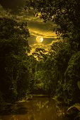 Landscape Of Sky With Clouds And Moon Over Serenity Nature In Forest. Sepia Tone. poster