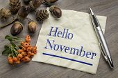 Hello November handwriting on a napkin with cone, acorn and firethorn season decoration poster
