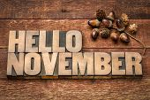 hello November greeting card - letterpress wood type blocks against grained wood with acorn decorati poster