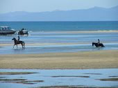 image of quicksand  - Horse riding at low tide on a sunny afternoon - JPG