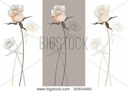 Vintage beautiful rose