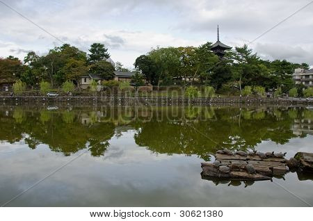Lake And Pagoda In Nara