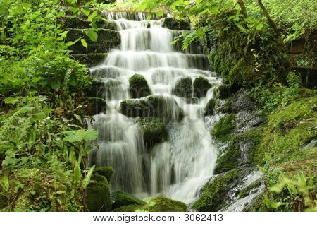 Water Fall In The Woods
