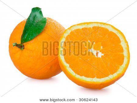 Oranges Isolated