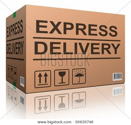 express delivery fast sending speed parcel posting cardboard box package shipment ship order