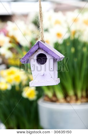 Starling House