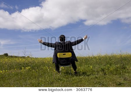 Businessman Relaxing In The Field