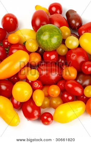Many colorful Tomatoes