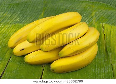 delicious healthy fresh yellow bananas