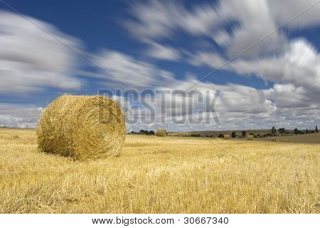 One golden hay bale in the countryside on a perfect sunny day (autumn season)