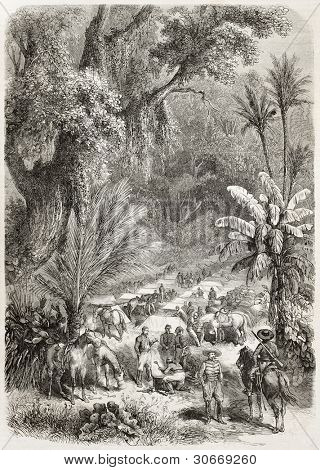 Intervention in Mexico: French encampment in Chiquihuite forest. Created by Blanchard and Worms, published on L'Illustration, Journal Universel, Paris, 1863
