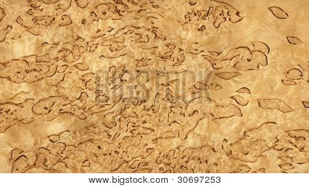Karelian birch (wood texture)