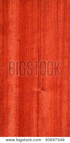 Pterocarpus (wood texture)