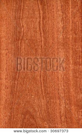 Sapele (wood texture)