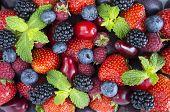 Ripe Strawberries, Raspberries, Black Berry; Red Berries, Plum And Bleberries. Top View. Red And Blu poster