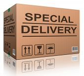 special delivery important shipment special package sending express shipping cardboard box isolated