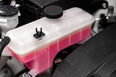 Close-up White Expansion Tank With Pink Antifreeze. Car Coolant Level In Radiator System In Car, Aut poster