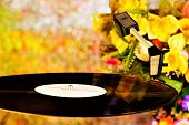 Vinyl Record On A Retro Disco Background Bokeh Lights And Flowers. The Vinyl Gramophone Record Retro poster