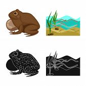 Isolated Object Of Wildlife And Bog Logo. Set Of Wildlife And Reptile Vector Icon For Stock. poster