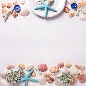 Sea Or Ocean Elements And White Plate On White Textured  Background. Shells,  Sea Star,  Coral, Sea  poster