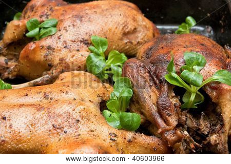 Garnished roasted duck