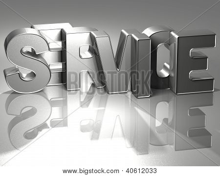 3D Word Service On Silver Background