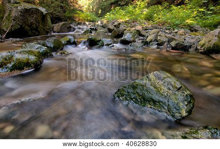 Green Rocks In Flowing Creek