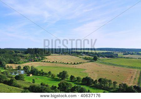 Summer Landscpae