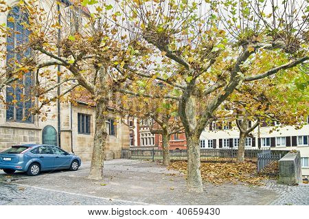 Trees At The Wall Of Church